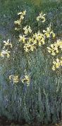 Claude Monet Yellow Irises china oil painting reproduction
