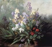Barbara Bodichon Landscape with Irises china oil painting reproduction