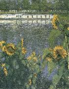 Gustave Caillebotte The sunflowers of waterside china oil painting reproduction
