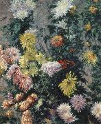 Gustave Caillebotte Chrysanthemums,Garden at Petit Gennevilliers china oil painting reproduction