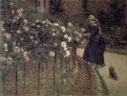 Gustave Caillebotte Roses-The Garden in Petit-Gennevilliers china oil painting reproduction