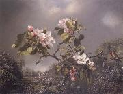 Martin Johnson Heade Apple Blosoms and Hummingbird china oil painting reproduction