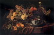 Jan  Fyt Fruit and a Parrot china oil painting reproduction