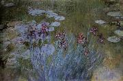 Claude Monet Irises and Water Lillies china oil painting reproduction