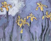 Claude Monet Yellow Irises with Pink Cloud china oil painting reproduction