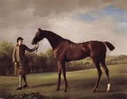 George Stubbs Lustre hero by a Groom china oil painting reproduction
