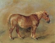 James Ward A Suffolk Punch china oil painting reproduction