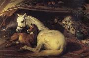Sir Edwin Landseer The Arab Tent china oil painting reproduction