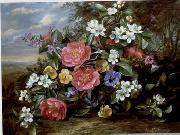 unknow artist Floral, beautiful classical still life of flowers.080 china oil painting reproduction