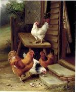 unknow artist Cocks 123 china oil painting reproduction