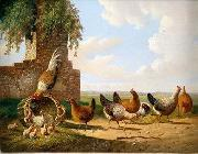 unknow artist Cocks 059 china oil painting reproduction