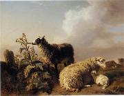 unknow artist Sheep 150 china oil painting reproduction