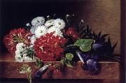 unknow artist Floral, beautiful classical still life of flowers.036 china oil painting reproduction