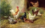 unknow artist poultry  127 china oil painting reproduction