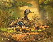 unknow artist Ducks 101 china oil painting reproduction