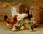 unknow artist Cocks 092 china oil painting reproduction