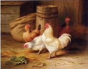 unknow artist Cock 187 china oil painting reproduction