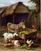 unknow artist Cocks and Sheep 129 china oil painting reproduction