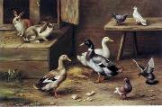unknow artist poultry  174 china oil painting reproduction