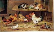 unknow artist Cocks and rabbits 130 china oil painting reproduction