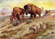 unknow artist Buffalo Family china oil painting reproduction