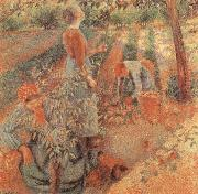 Camille Pissarro Apple picking china oil painting reproduction