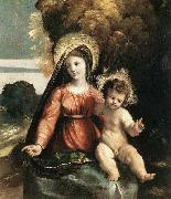 Dosso Dossi Madonna and Child china oil painting reproduction