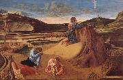 Giovanni Bellini Christ in Gethsemane china oil painting reproduction