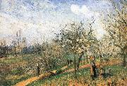 Camille Pissarro Pang map of apple Schwarz china oil painting reproduction