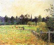 Camille Pissarro Cattle china oil painting reproduction