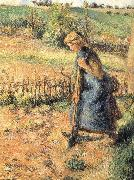 Camille Pissarro The collection of hay farmer china oil painting reproduction