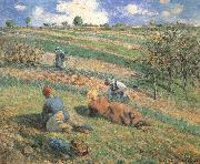 Camille Pissarro Field work china oil painting reproduction