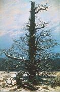 Caspar David Friedrich The Oak Tree in the Snow china oil painting reproduction