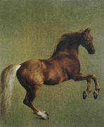 George Stubbs whistlejacket china oil painting reproduction