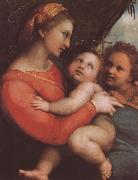 RAFFAELLO Sanzio The virgin mary and younger John china oil painting reproduction