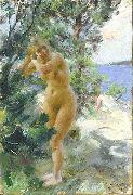 Anders Zorn After the Bath, china oil painting reproduction