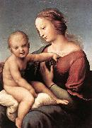 RAFFAELLO Sanzio Madonna and Child china oil painting reproduction
