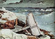 Winslow Homer After Tornado china oil painting reproduction