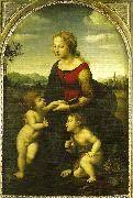 Raphael virgin and child wild st. china oil painting reproduction