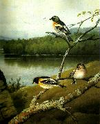 broderna von wrights bergfinkar china oil painting reproduction