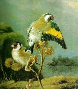 broderna von wrights steglitsar pa kardborre china oil painting reproduction