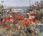 Childe Hassam Celia Thaxter's Garden, Isles of Shoals china oil painting reproduction