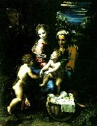 Raphael holy family with st john the baptist china oil painting reproduction