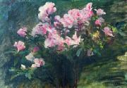 Charles-Amable Lenoir Study of Azaleas china oil painting reproduction
