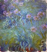 Claude Monet Agapanthus oil painting picture wholesale