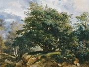 Jules Coignet Old Oak in the Forest of Fontainebleau china oil painting reproduction