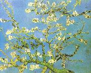Vincent Van Gogh Blossomong Almond Tree oil painting picture wholesale