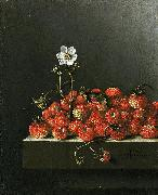 Adriaen Coorte Still life with wild strawberries. oil