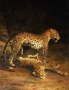 Jacques-Laurent Agasse Two Leopards Lying in the Exeter oil painting picture wholesale