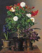Johan Laurentz Jensen Camelias, amaryllis, hyacinth and violets in ornamental pots on a marble ledge oil painting picture wholesale